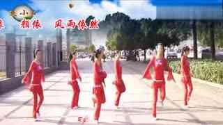 安庆小红人广场舞 美极了