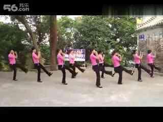 百家广场舞 北京的金山上