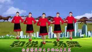 滨海新区汉沽和悦广场舞 黑骏马