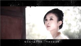 《知否知否应是绿肥红瘦》定角之YY向MV