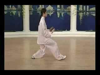 太极拳慢动作完整教学李德印48式太极拳教学鬼凤鬼步舞视频教学图片