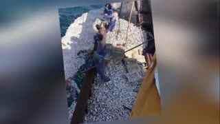 鱼群突然浮出海面,渔船白捡近2万斤黄鱼
