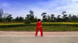 舞动旋律广场舞 搏击健身操