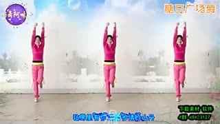 糖豆广场舞 适合初学者的舞蹈《多情的山丹》