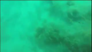 大地震时人躲在海底会怎样