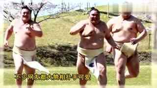 日本相扑手樱花树下拍妩媚写真 网友  想打人