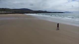 一夜狂潮海滩重新变成沙滩