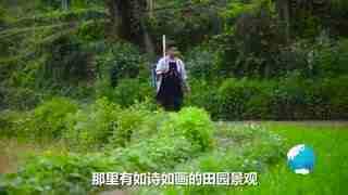 Hi走啦_20170617_贵州黔灵山公园猴子称霸,什么都敢抢,游客很害怕