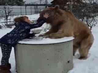 全球搞笑精选 棕熊真的是一种有奶便是娘的动物哈哈哈哈,太乖了