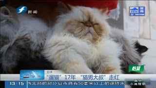 """""""遛猫""""17年 日本""""猫男大叔""""走红"""
