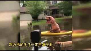 美国一城市被洪水淹没 霸王龙划艇上街?
