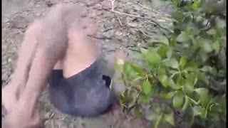 男子钻进泥洞捉出巨型螃蟹