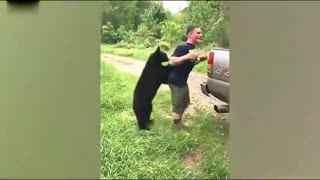 野营者偶遇小黑熊遭熊抱求带走