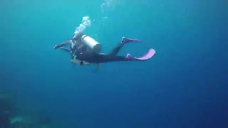 Hi走啦_20170629_美女仙本那潜水,深海27米,与海龟共舞!
