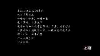 态度_20170814_谢建明—眉毛高山 有机禅茶