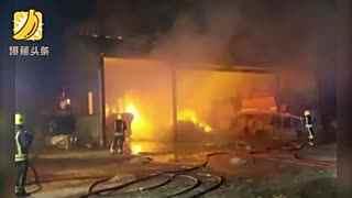 小猪火场中获救 半年后被做成香肠送给消防员