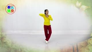 广场舞健身教学《为什么喜欢你》
