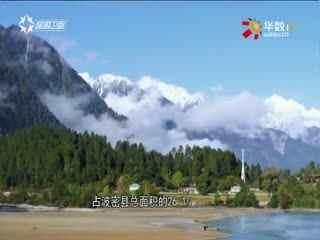 文明中华行_20170910_冰川秘境 至美波密
