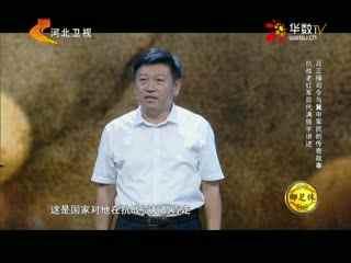 中华好家风_20170918_抗战老红军后代满振宇讲述吕正操司令与冀中军民的传奇故事