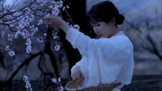 李子柒古香古食_20180713_桃花糕