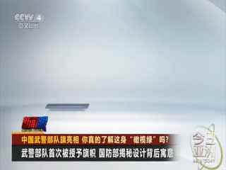 """中国武警部队旗亮相 你真的了解这身""""橄榄绿""""吗?"""