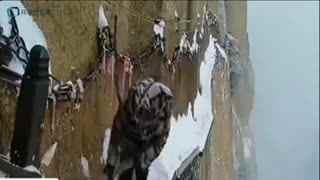 26岁栈道护路人华山绝壁扫雪 一般只能干到30岁