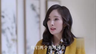 《谈判官》黄子韬酒店夜会杨幂,自称单身太久很寂寞,却遭到嫌弃!