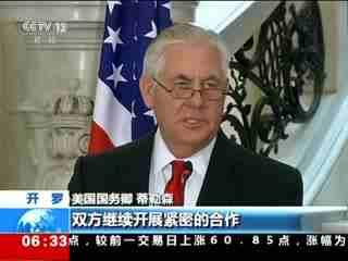 蒂勒森:美国支持埃及的反恐行动