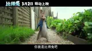 《比得兔》 主演新春问候视频