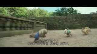《比得兔》 中文版剧场预告片