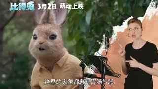 《比得兔》 角色特辑