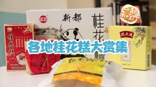 一起来吃吧_20191122_全国桂花赏味地图