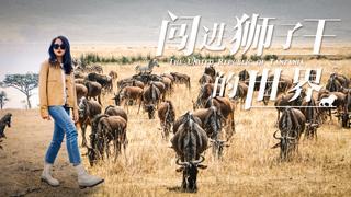 中国美女勇闯野兽世界,不惧狮子包围跑去这里,却被这幕迷了眼!