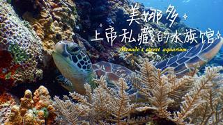 Hi走啦_20190107_对不起,现在才告诉你!上帝私藏的印尼秘境,这才是潜水的天堂