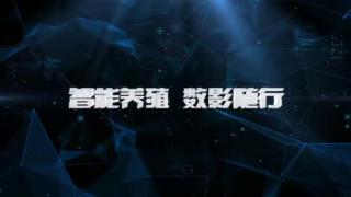 对话新时代_20190818_何京翔:智能养殖 数影随行
