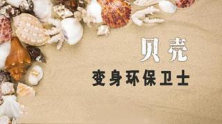 李远奖:贝壳变身环保卫士
