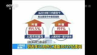 国家外汇管理局:到2018年12月外汇储备30727亿美元