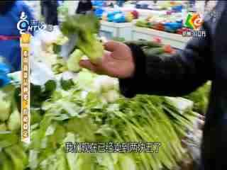 生活大参考_20190112_本周蔬菜品种多 价格稳定