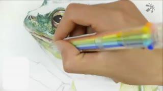 蔡叔叔讲画之圆珠笔和水彩画 第8集