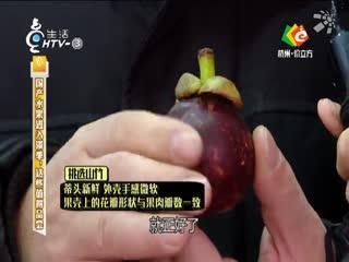 生活大参考_20190223_国产水果进入淡季 这些值得品尝