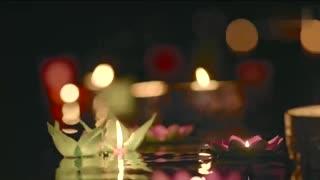 《让我听懂你的语言》片花:邱泽情遇西双版纳