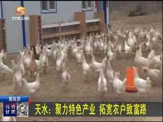 新闻晚高峰_20190322_天水:聚力特色产业 拓宽农户致富路