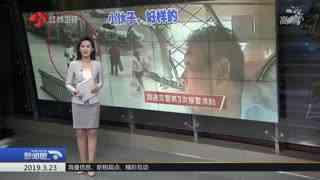 """新闻眼_20190323_""""3 21""""响水天嘉宜公司爆炸事故处置最新情况"""
