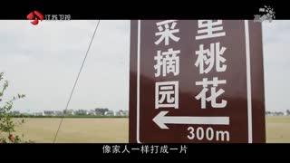 时代风范_20190324_时代风范(03月24日)