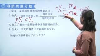 人教版初中化学九年级下册同步课程  第10集