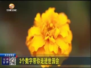 新闻晚高峰_20190429_探营魅力世园会:让世界感知甘肃文化