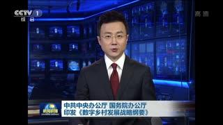 中共中央办公厅 国务院办公厅印发《数字乡村发展战略纲要》