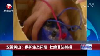 安徽黄山:保护生态环境 杜绝非法捕捞