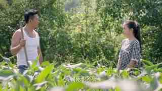 《乡村情感之女怕嫁错郎》秦小玲找到董家亮,希望他娶她,董家亮毫不犹豫地拒绝了她