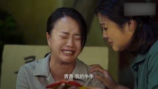 《小草青青》警察终于帮喜鹊找到了孩子的消息,结果听到的却是孩子的死讯!